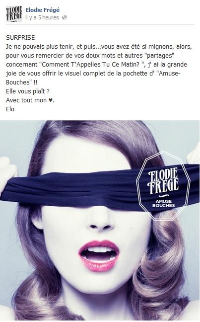 Messages d'Elodie Frégé sur Facebook (de Août 2013 à Avril 2014) Elooo10