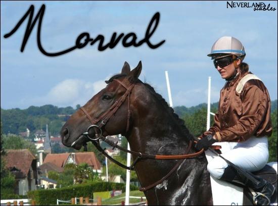 [ Norval - Etalon - 15 ans ] Norval10