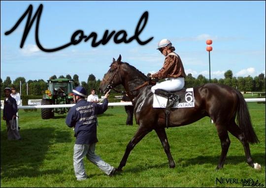 [ Norval - Etalon - 15 ans ] Norval11