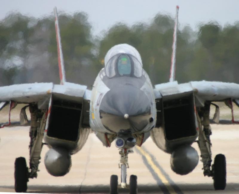 GRUMMAN F14 TOMCAT Grumma11