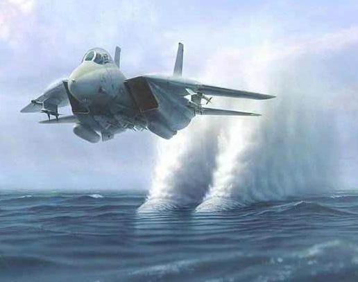 GRUMMAN F14 TOMCAT Tomcat11