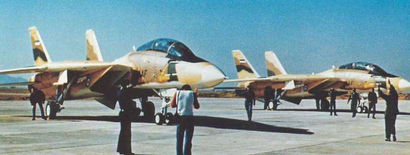GRUMMAN F14 TOMCAT Tomcat12
