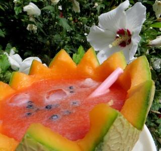 Soupe de melon glacé Img_2817