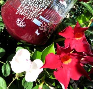 Jus fruits rouges Img_2918
