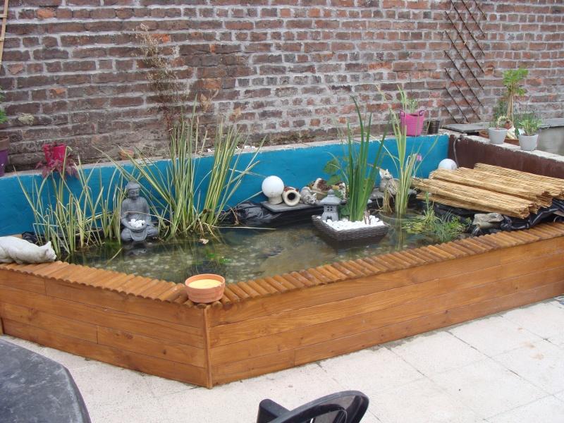 mon bassin sur la terrase pour boire un verre au pres des carpe koii Dsc01812