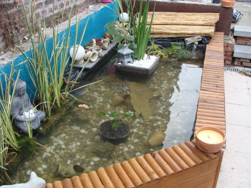 mon bassin sur la terrase pour boire un verre au pres des carpe koii Dsc01813