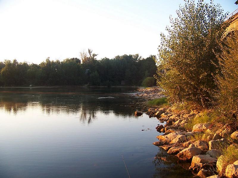 Pêche sur le gardon 100_4112