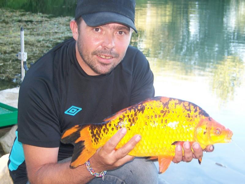Pêche sur le gardon 100_4126