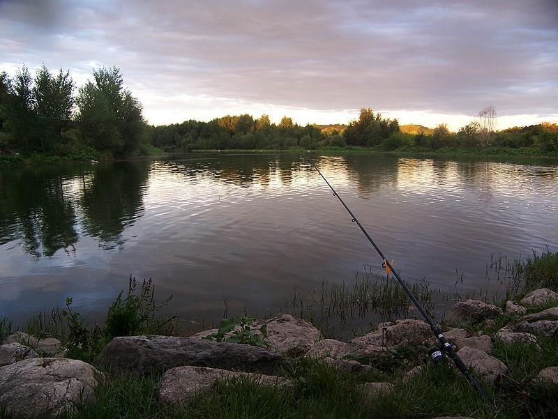 Pêche sur le gardon 100_4218