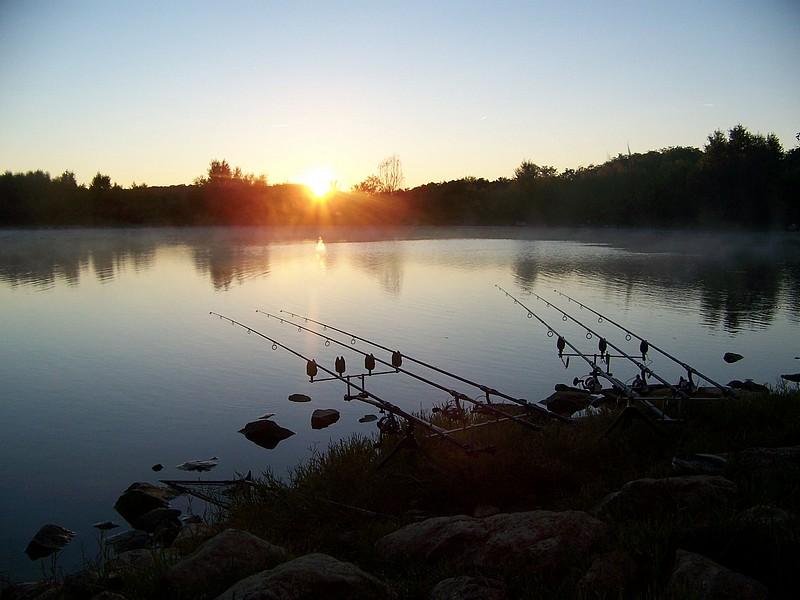 Pêche sur le gardon 100_4231