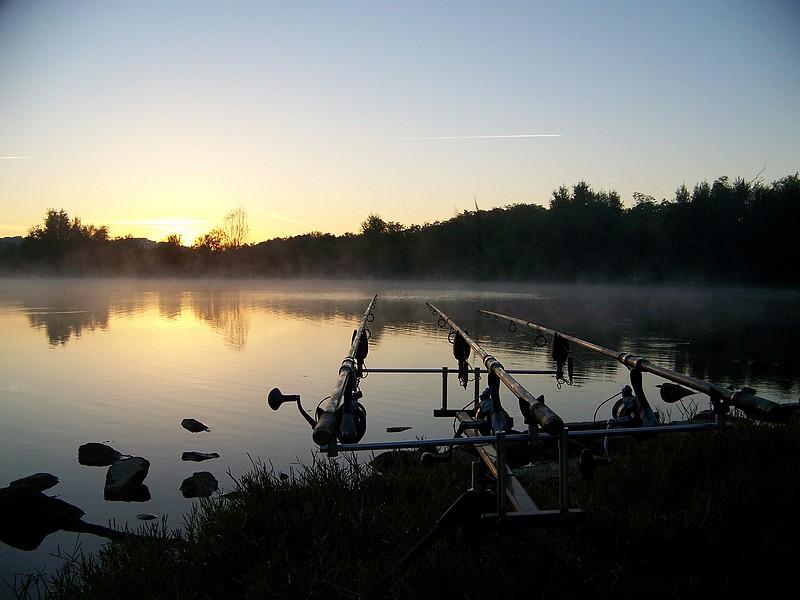 Pêche sur le gardon 100_4235