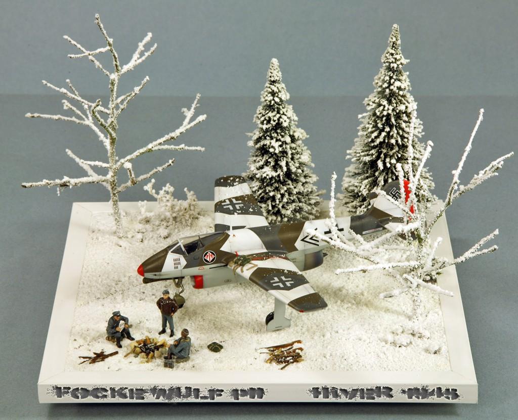 Focke Wulf Fw PII (Projekt II) [1/72 - Special Hobby] Img_7941