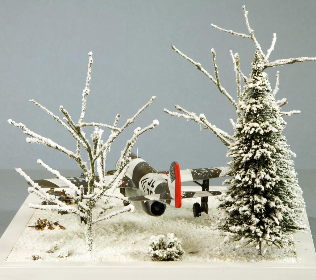 Focke Wulf Fw PII (Projekt II) [1/72 - Special Hobby] Img_7951