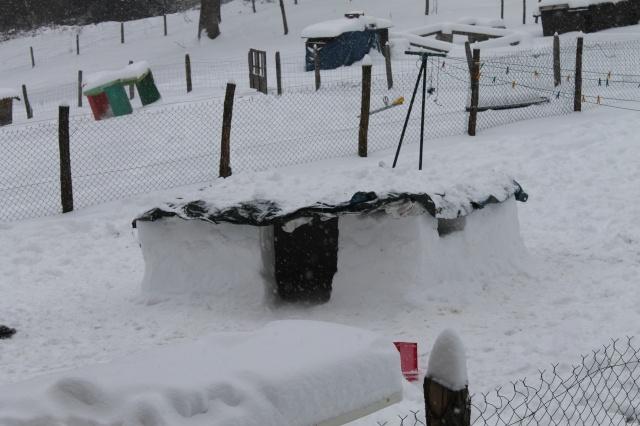 une journée de neige Img_0112