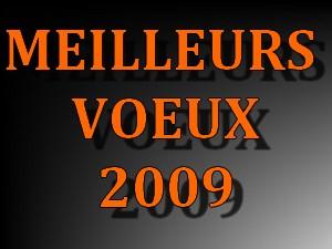 Meilleurs voeux pour l'année 2009 Meille10