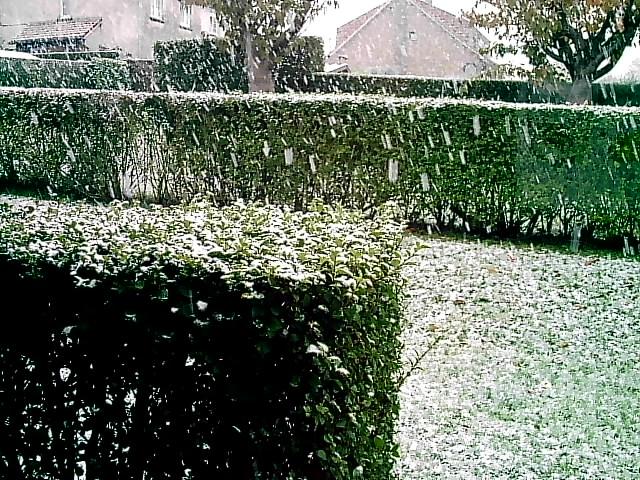 Photos de neige du coté de chez vous 50400912