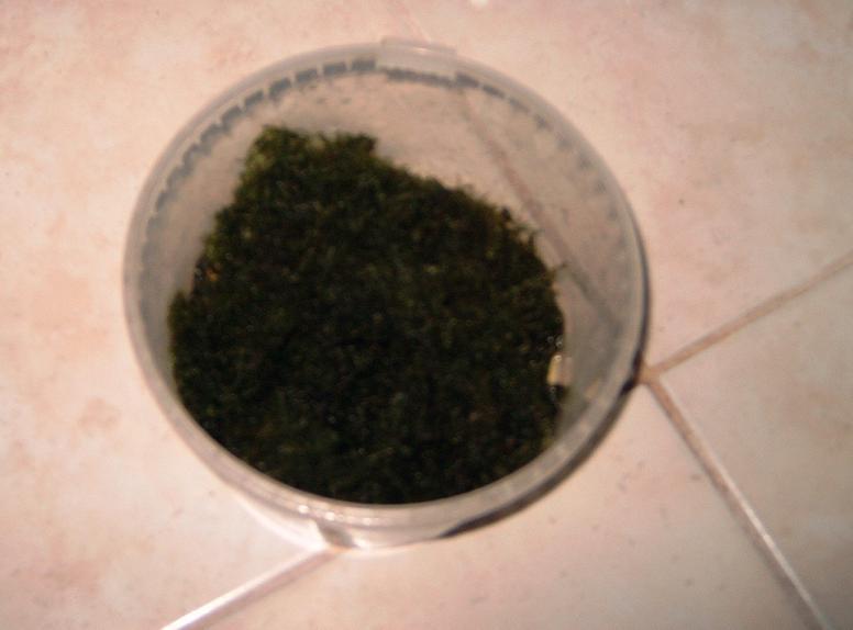 Confection d'un mur de mousse de java Mur110