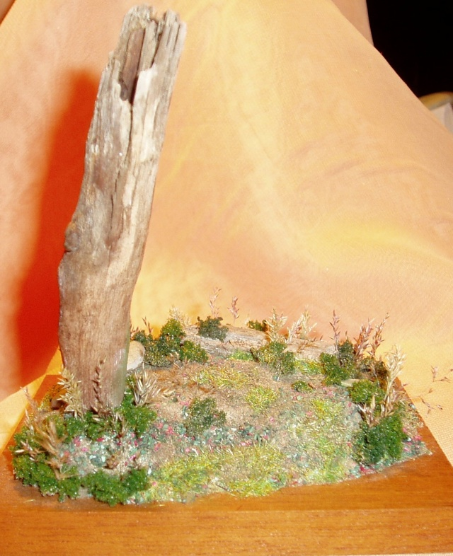 Dioramas (demande de mode d'emploi :) ) Decor110