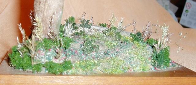 Dioramas (demande de mode d'emploi :) ) Decor510