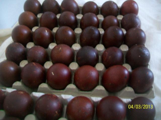 marans - L'œuf de la Marans 100_3810