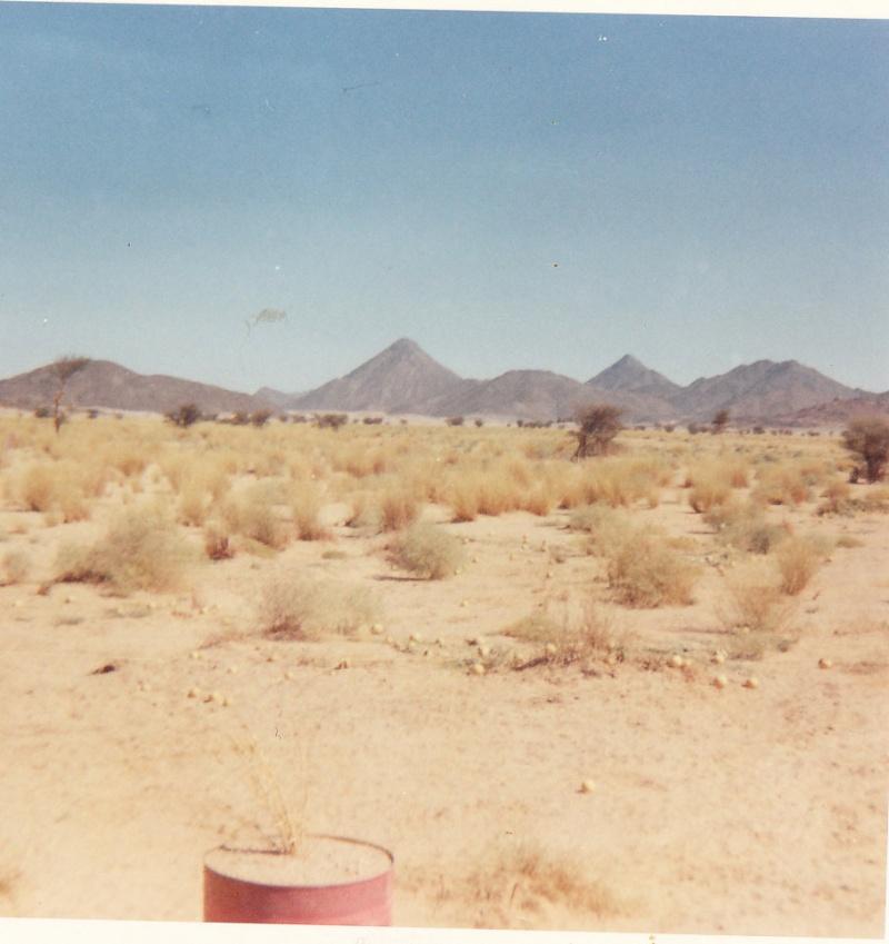 Recherche chauffeurs ou mecaniciens sahariens - Page 2 Img_0047