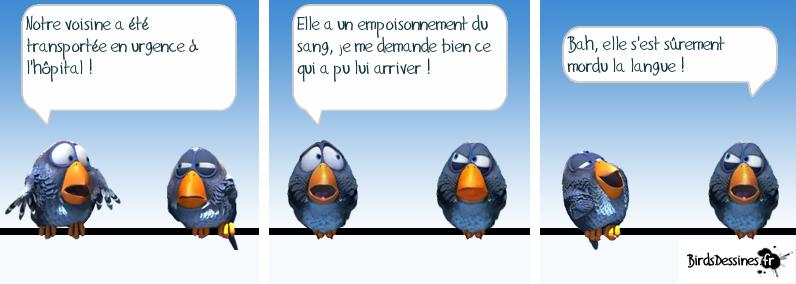 Les Birds - Page 2 13632511