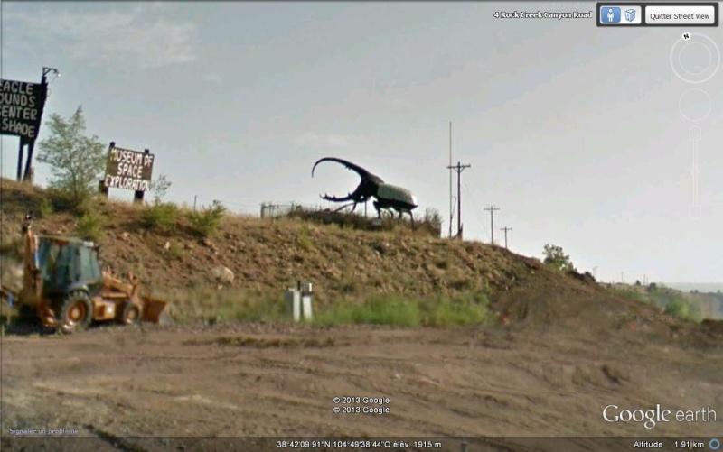 Scarabée - Fort Carson - Colorado - USA Svg10