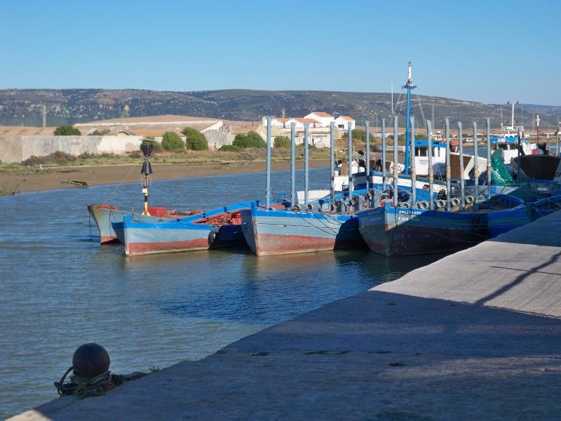 La pêche au thon rouge: tonnara, almadraba, mattanza et tutti quanti... 101_4711