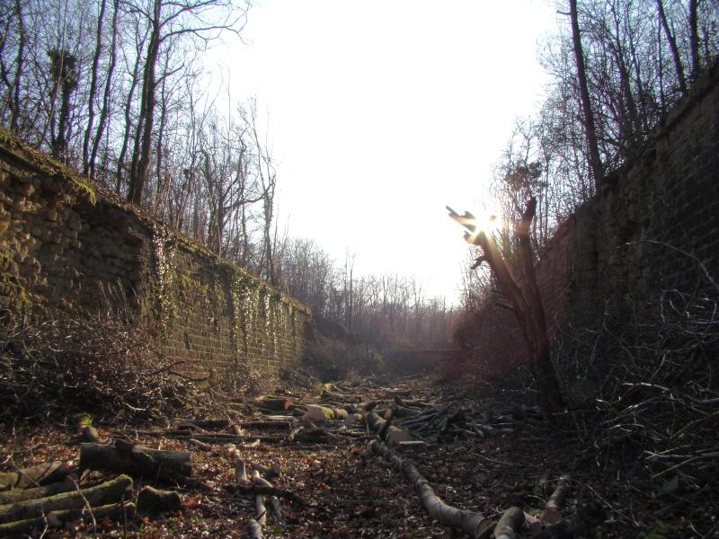 Retour au fort de Moulainville Dsc09623