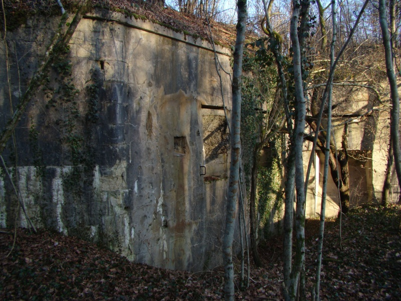Retour au fort de Moulainville Dsc09627