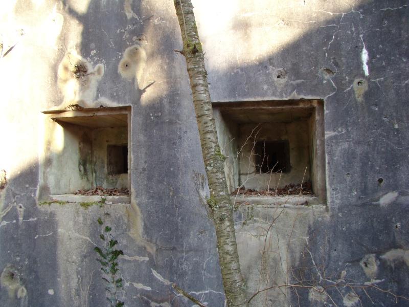 Retour au fort de Moulainville Dsc09629