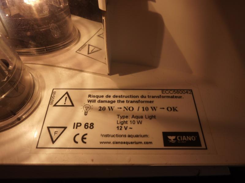 J'ai amélioré mon éclairage (technique brunoorléans) ! P1050611