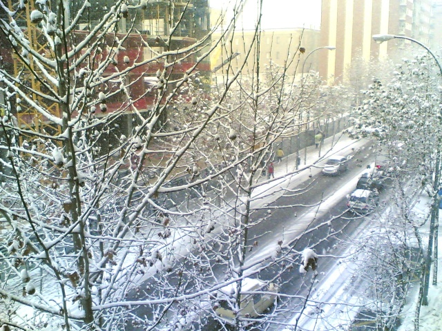 Nieve 15122011