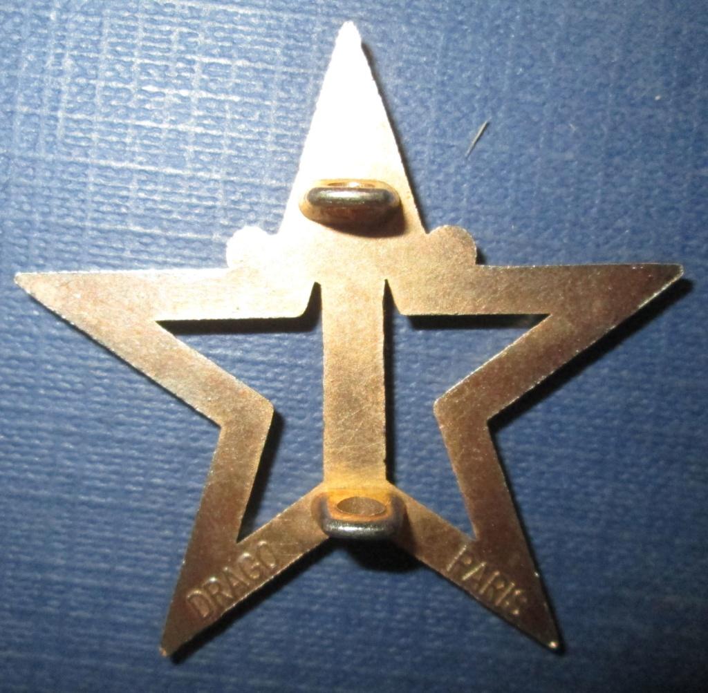 Insigne a identifier,etoile et épée? Img_8411