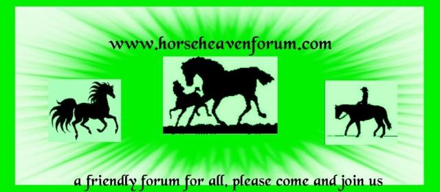 www.horseheavenforum.org