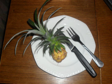 Mon ananas 08_02_10