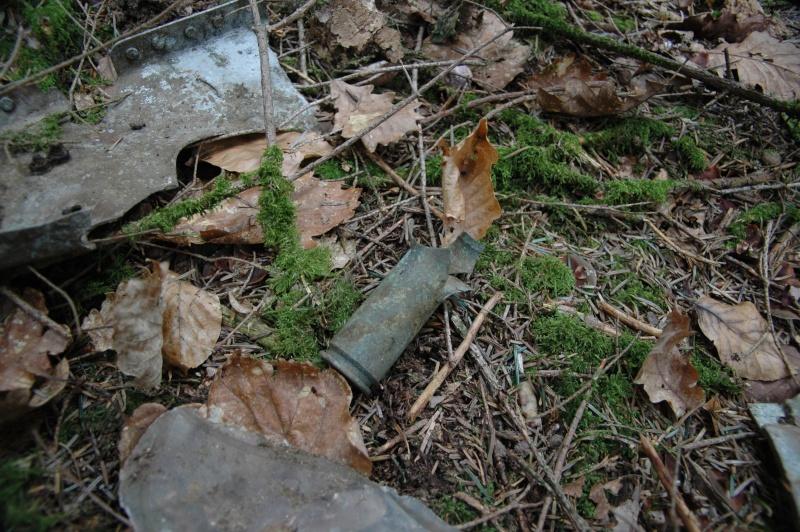 restes d'avion a identifier environs d'eloyes Dsc_0229