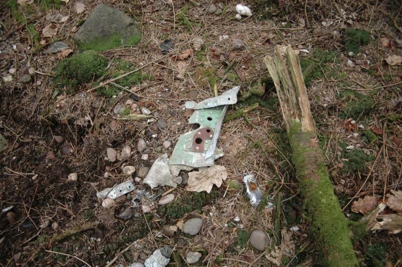 restes d'avion a identifier environs d'eloyes Dsc_0231
