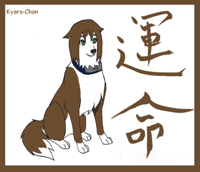 naruto wolves xD Matsur10