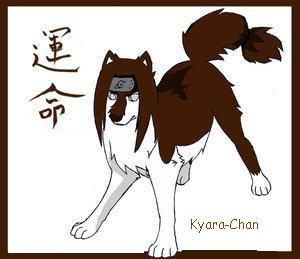 naruto wolves xD Neji_b10