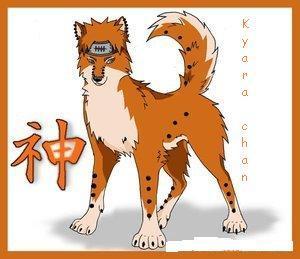 naruto wolves xD Pein_b10