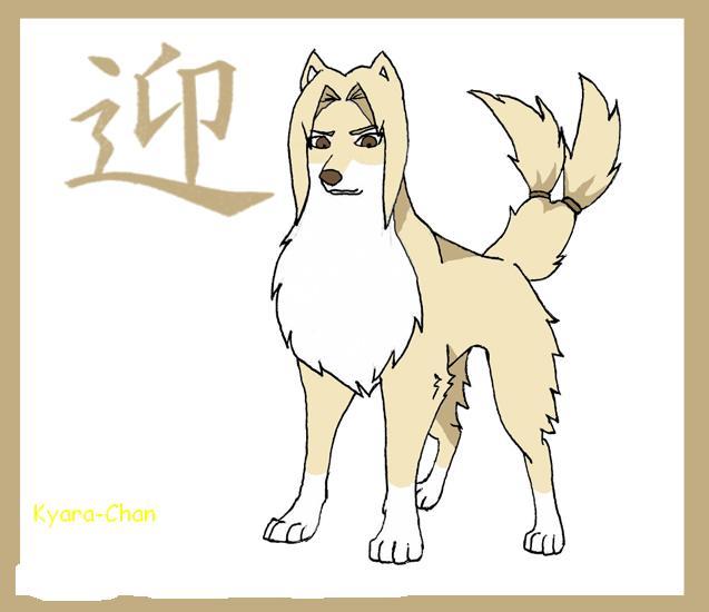 naruto wolves xD Tsunad10