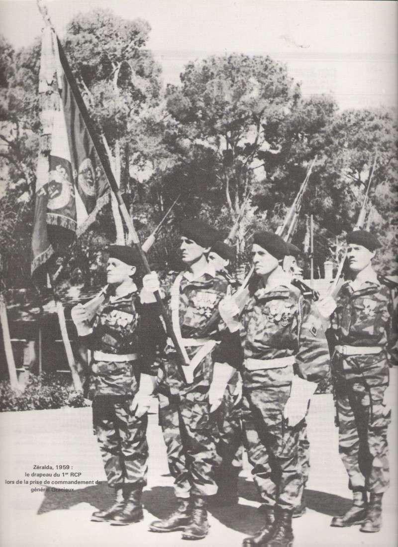 drapeau du 1 RCP Numar105
