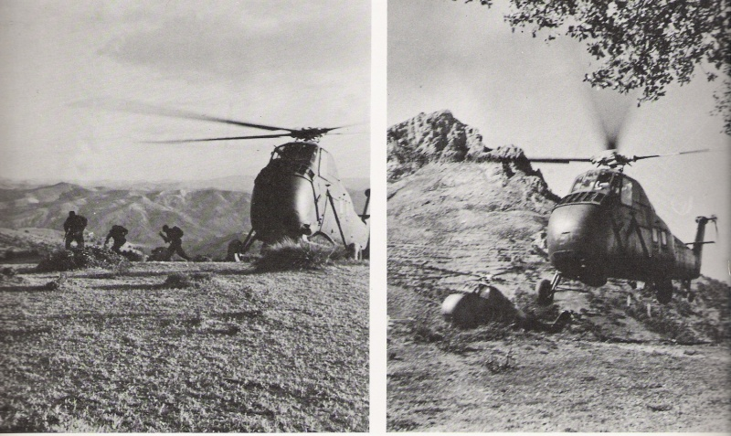 les hélicos fer de lance des troupes d'interventions Numar180