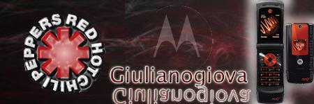 pidan firmas Guilia10