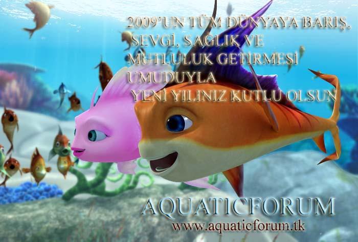 YENİ YILINIZ KUTLU OLSUN Aquaye10