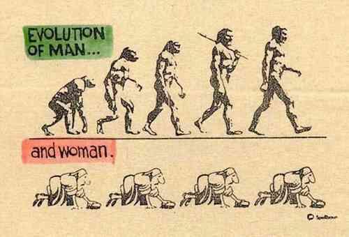 les blagues en images - Page 4 Evolut10