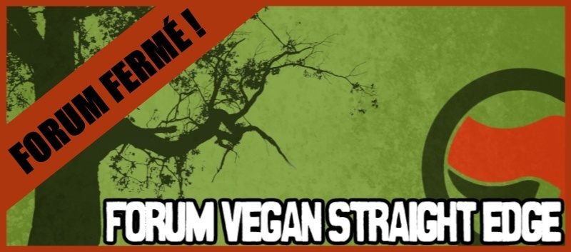 Forum Vegan Straight Edge Banfer10