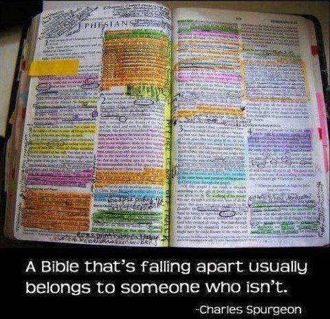 THE BIBLE IS NOT A SCIENCE BOOK -Yet Bible_11