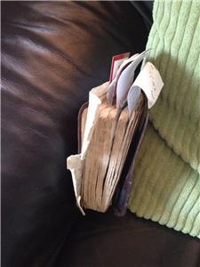 IN CHRIST YeshuaHa'Mashiach SCRIPTURES Biblee10